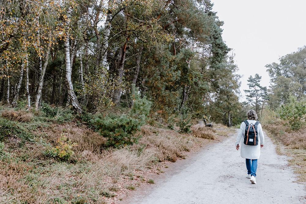 Met de hond naar Landal Dwergter Sand, Duitsland - Angelina Catharina